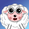 Fellow Sheep
